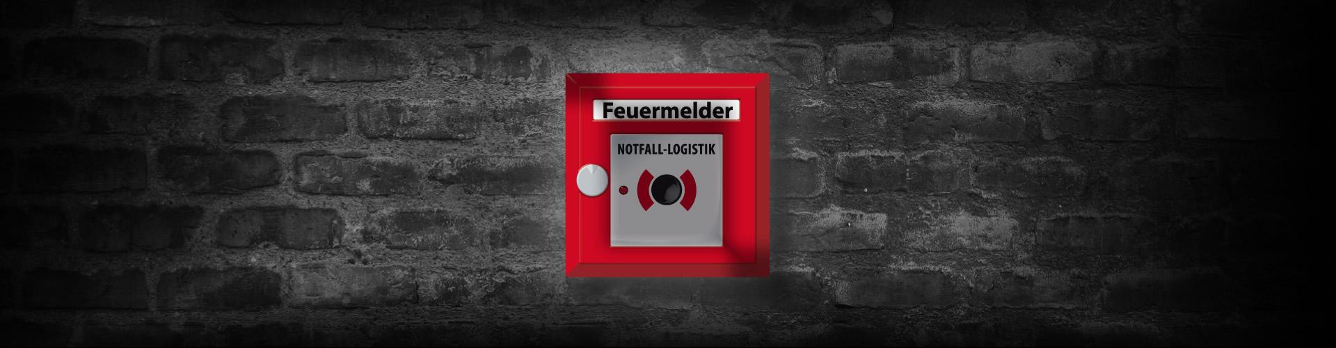 Herzblut Disponent (m/w/d) Für Fahrzeugtransporte  Gesucht!